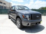 2011 Sterling Grey Metallic Ford F150 FX4 SuperCrew 4x4 #52724823