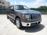 2011 Sterling Grey Metallic Ford F150 Texas Edition SuperCrew #52724825