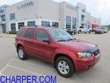 2006 Redfire Metallic Ford Escape Hybrid 4WD #52724431