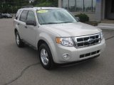 2009 Light Sage Metallic Ford Escape XLT #52724982