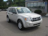 2009 Light Sage Metallic Ford Escape XLT V6 #52724984