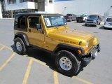 2003 Jeep Wrangler Inca Gold Metallic