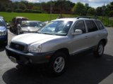 2004 Pewter Hyundai Santa Fe GLS 4WD #52818121