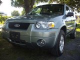 2006 Titanium Green Metallic Ford Escape Limited 4WD #52817244