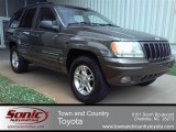 1999 Jeep Grand Cherokee Deep Slate Pearl