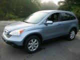 2009 Glacier Blue Metallic Honda CR-V EX-L 4WD #52817953