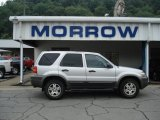 2006 Silver Metallic Ford Escape XLT V6 4WD #52971715