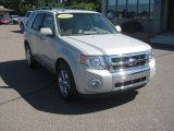 2009 Light Sage Metallic Ford Escape Limited V6 #53005383
