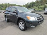 2010 Black Forest Pearl Toyota RAV4 I4 4WD #53064535