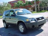 2006 Titanium Green Metallic Ford Escape XLS #441550