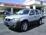 2006 Silver Metallic Ford Escape XLT V6 4WD #442450
