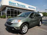 2009 Green Tea Metallic Honda CR-V EX 4WD #53117355