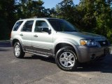 2006 Titanium Green Metallic Ford Escape XLT V6 #522029