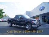 2011 Ebony Black Ford F150 XLT SuperCab 4x4 #53247497