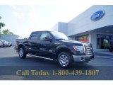 2011 Ebony Black Ford F150 XLT SuperCrew #53247499