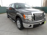 2011 Sterling Grey Metallic Ford F150 Texas Edition SuperCrew #53327714