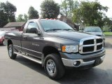 Dodge Ram 2500 2004 Data, Info and Specs