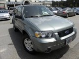2006 Titanium Green Metallic Ford Escape Limited #53364437