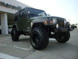 2006 Jeep Green Metallic Jeep Wrangler Sport 4x4 #53364603