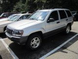 2002 Bright Silver Metallic Jeep Grand Cherokee Sport 4x4 #53409426