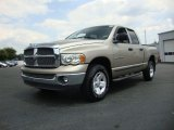 2002 Dodge Ram 1500 Light Almond Pearl