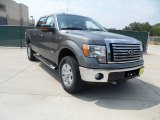 2011 Sterling Grey Metallic Ford F150 Texas Edition SuperCrew 4x4 #53409771
