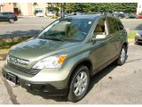 2009 Green Tea Metallic Honda CR-V EX-L 4WD #53463275