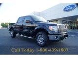 2011 Ebony Black Ford F150 XLT SuperCrew 4x4 #53598497