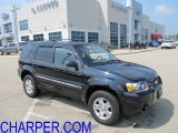 2006 Black Ford Escape Limited 4WD #53621612