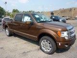 2011 Golden Bronze Metallic Ford F150 Platinum SuperCrew 4x4 #53621766