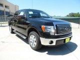 2011 Ebony Black Ford F150 Texas Edition SuperCrew #53651174