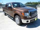 2011 Golden Bronze Metallic Ford F150 XLT SuperCrew #53651177