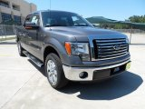 2011 Sterling Grey Metallic Ford F150 Texas Edition SuperCrew #53651179