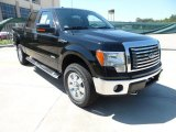 2011 Ebony Black Ford F150 XLT SuperCrew 4x4 #53651181