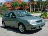 2005 Light Tundra Metallic Ford Focus ZX5 SE Hatchback #441546