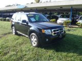 2009 Black Ford Escape XLT 4WD #53672289
