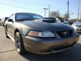 2001 Mineral Grey Metallic Ford Mustang GT Coupe #5359592