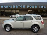 2009 Light Sage Metallic Ford Escape Limited V6 4WD #53671780