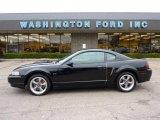 2001 Black Ford Mustang Bullitt Coupe #53671779