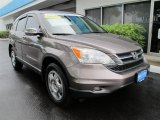 2010 Urban Titanium Metallic Honda CR-V LX #53774003