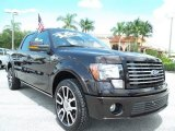 2010 Ford F150 Harley-Davidson SuperCrew