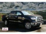 2011 Black Toyota Tundra Platinum CrewMax 4x4 #53904130