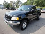 1999 Ford F150 Lariat Regular Cab 4x4 Data, Info and Specs