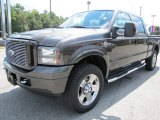 2007 Ford F250 Super Duty Dark Shadow Grey Metallic