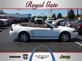 2002 Oxford White Ford Mustang V6 Convertible #53941263