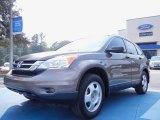 2010 Urban Titanium Metallic Honda CR-V LX #53961429