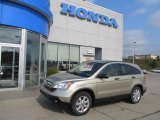 2009 Borrego Beige Metallic Honda CR-V EX 4WD #53961460
