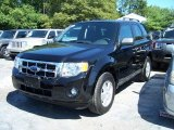 2009 Black Ford Escape XLT #53982516