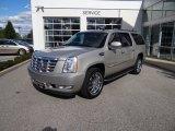 2007 Gold Mist Cadillac Escalade ESV AWD #53983580