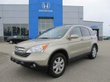 2008 Borrego Beige Metallic Honda CR-V EX-L 4WD #53982453